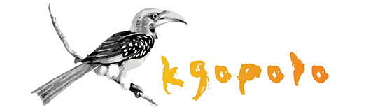 Kgopolo Insurance Products